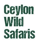 cws logo_small